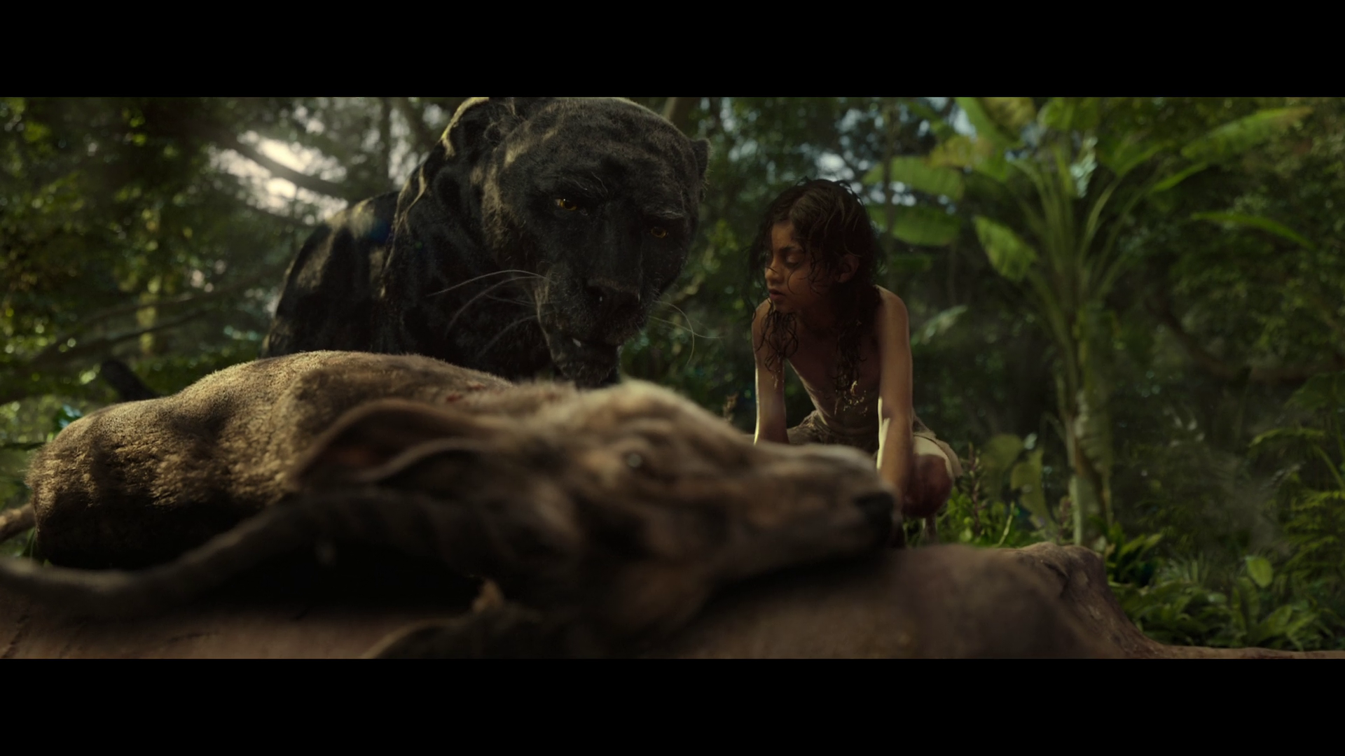 Маугли: Легенда джунглей / Mowgli: Legend of the Jungle (2018/WEB-DL) 1080p